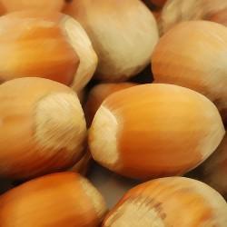 Hazelnut Flavour...