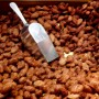 Maple Spiced Nuts Flavouring