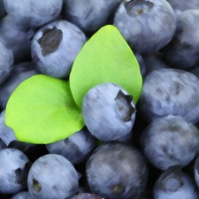 Minted Blueberry Flavour Concentrated Food Flavouring